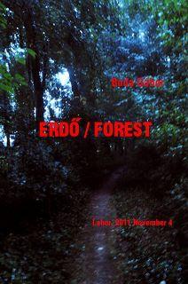 buda_forest